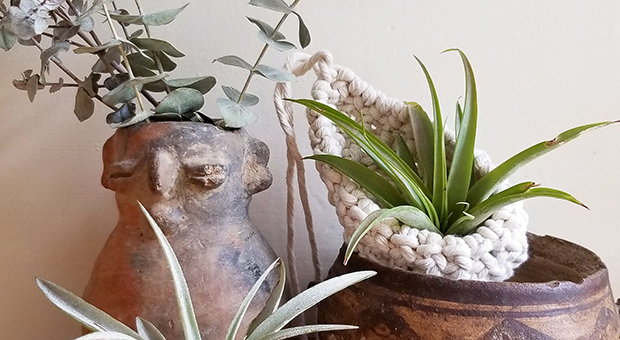 Laura Dyer of Knot Your Girl macrame air plant pod